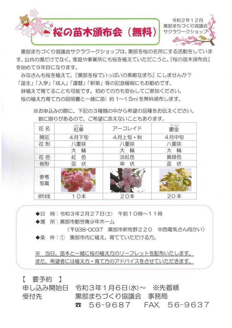 桜苗木無料頒布会